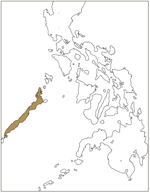 Distribution: Palawan Flying Squirrel